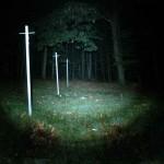 Wolf-Eyes Night-Hunter defokussiert