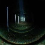 Wolf-Eyes Night-Hunter fokussiert