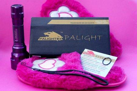 PALight C9 002