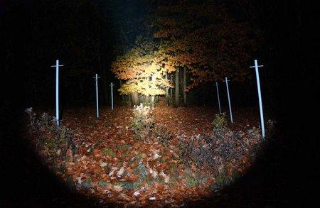 Lampen Schädlingsbekämpfung 011
