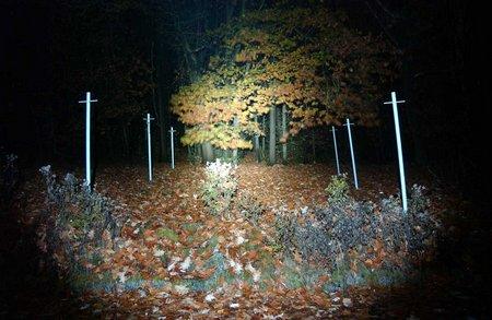 Lampen Schädlingsbekämpfung 013